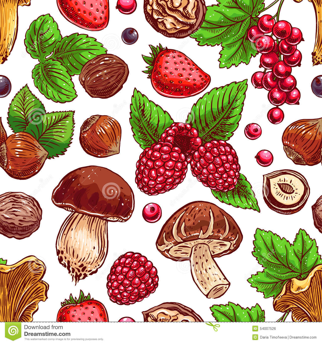 Background With Colorful Berries, Nuts And Mushrooms Stock Vector.
