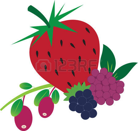 Mixed berry clipart.