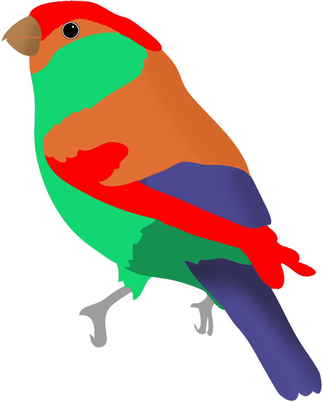 Colorful Drawings of Birds.