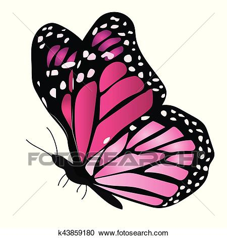 Illustration of a colorful butterfly Clipart.