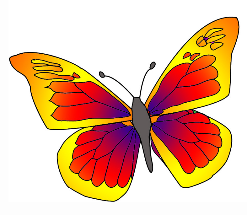 Colorful butterfly clipart 3 » Clipart Station.