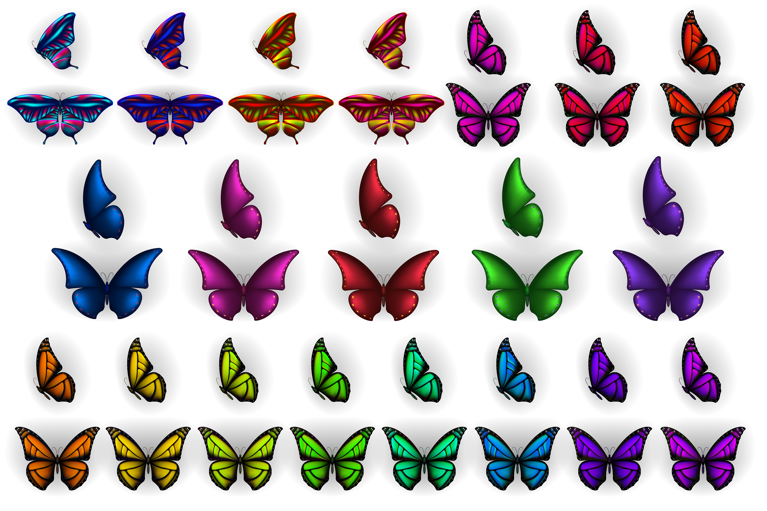 Set of colorful butterflies clipart.