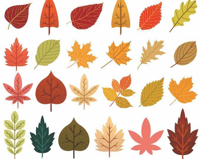 Autumn Leaf Clipart Fall Leaves Clip Art Thanksgiving.