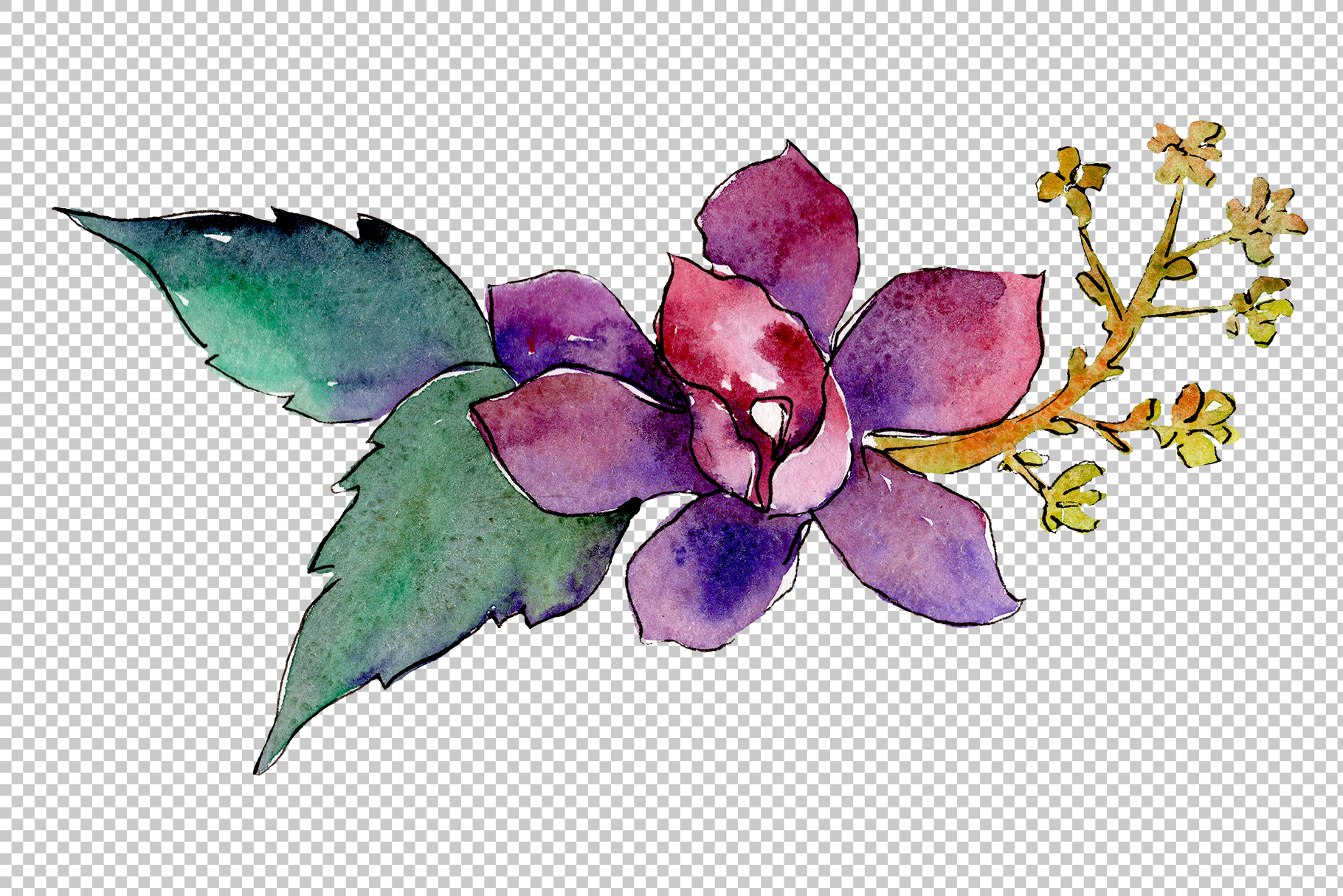 Bouquet of tropical colorful flower PNG watercolor.