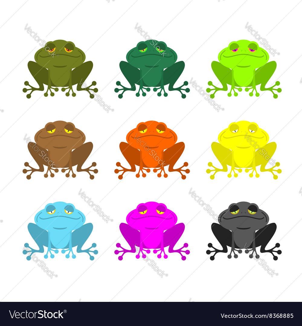 Frog color Set Colored toads Woody Orange frog.
