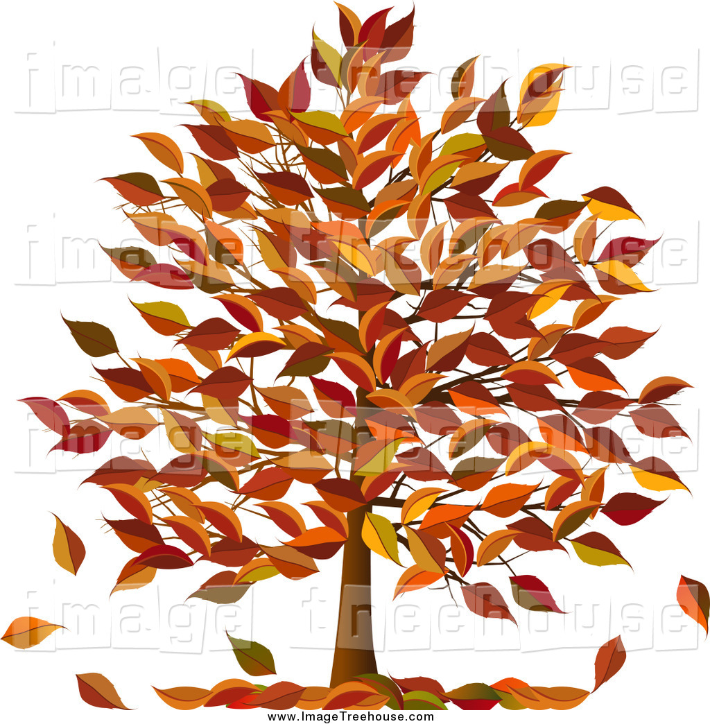 Royalty Free Autumn Foliage Stock Tree Designs.