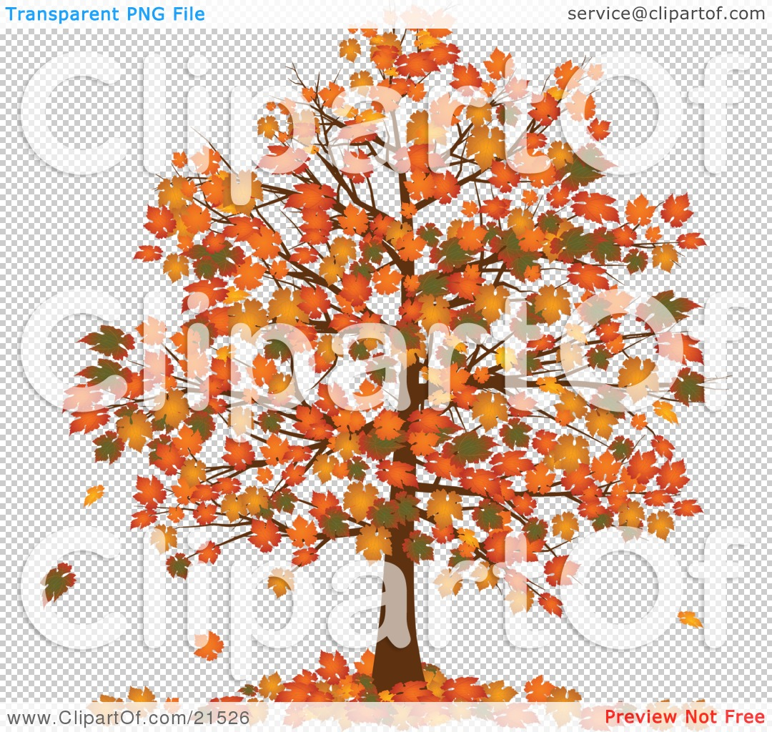 Clipart Illustration of an Autumn Tree With Vibrantly Colored.