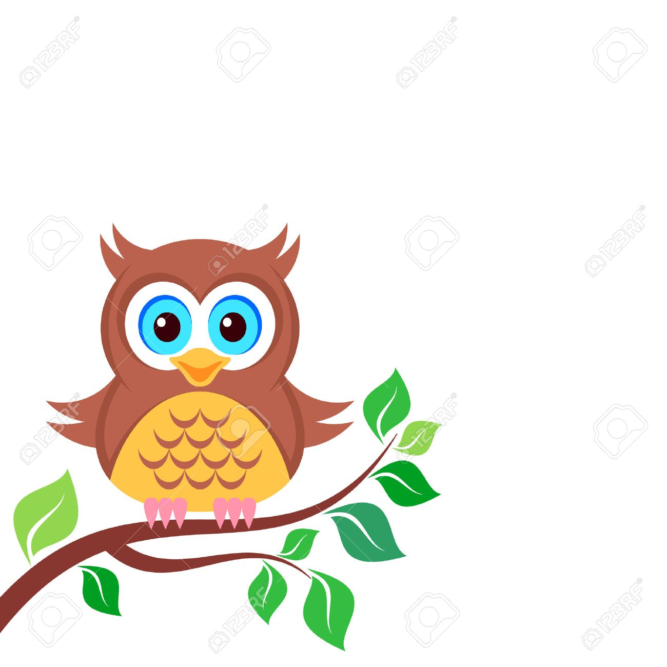 Cute colorful owl on the branch white background.