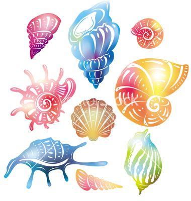 Colored seashell on VectorStock.