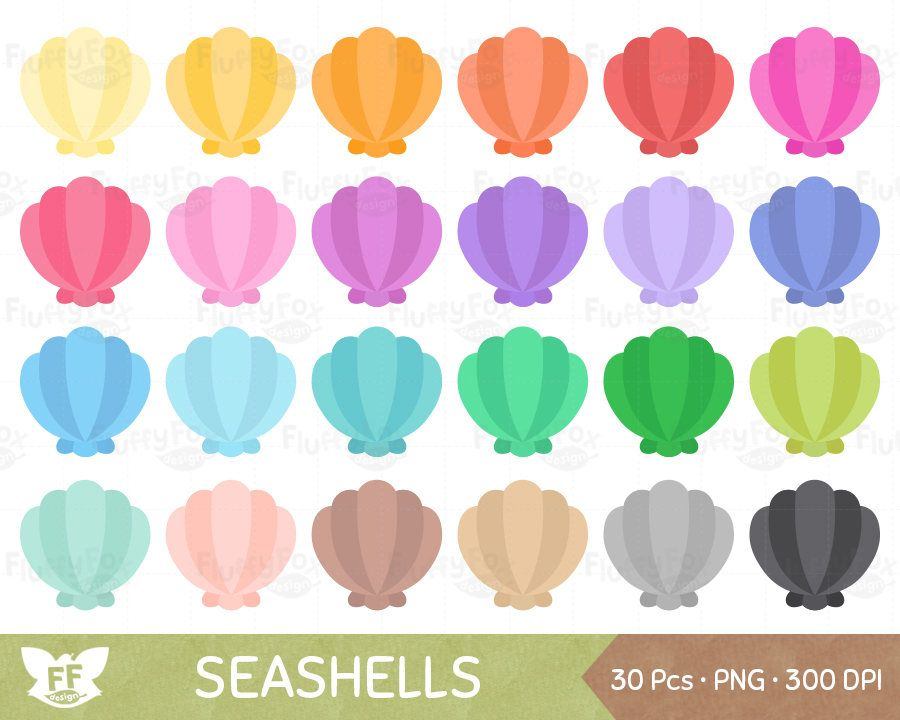 Seashell Clipart, Nautical Clip Art, Marine Sea Shell.