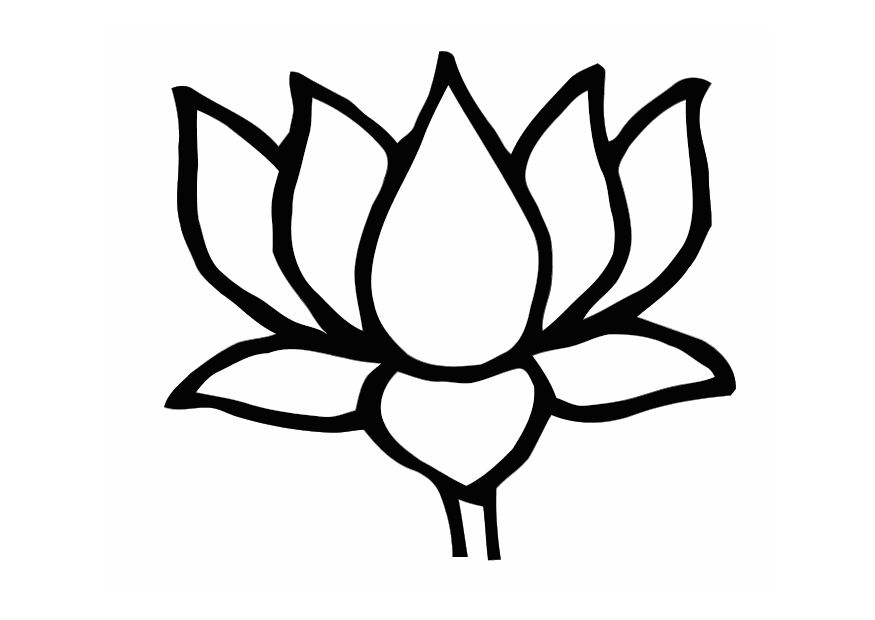 Lotus Flower Drawing.