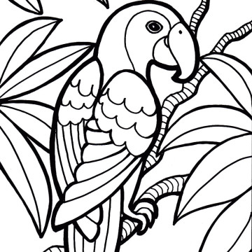 Parrot Coloring Pages.