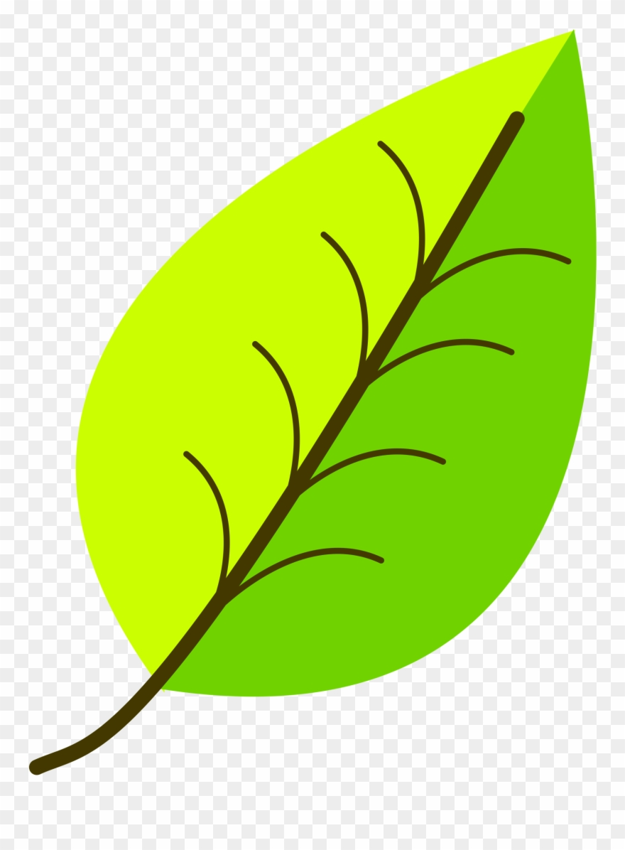 Clip Art Transparent Download Colour Leaf Vectorized.