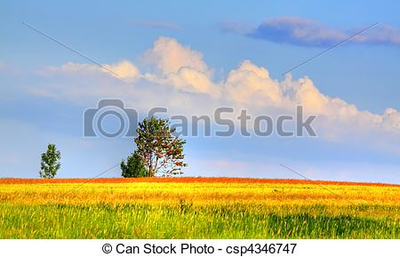 Picture of Landscape with coloured meadows and clouds.