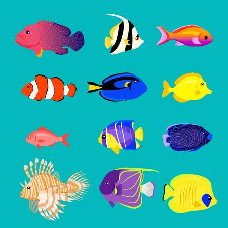 Colorful Fish Clipart (88+ images in Collection) Page 1.
