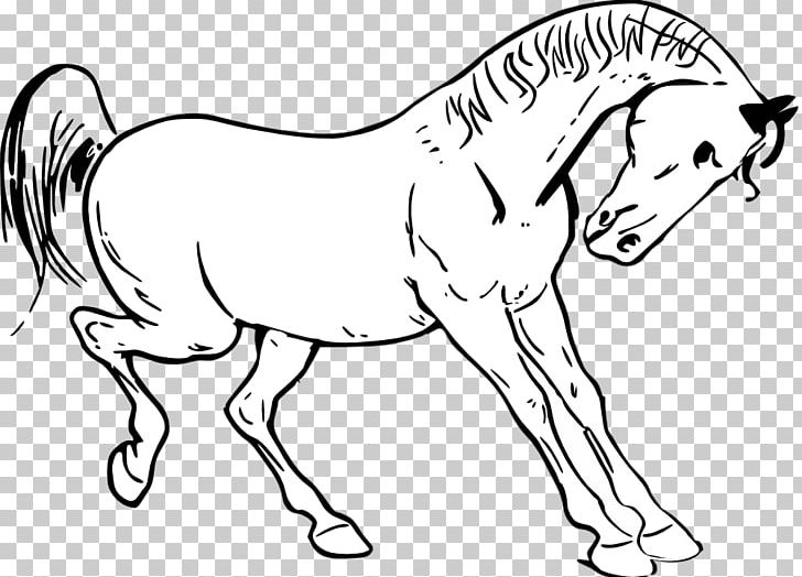 Tennessee Walking Horse Show Jumping PNG, Clipart, Black And.