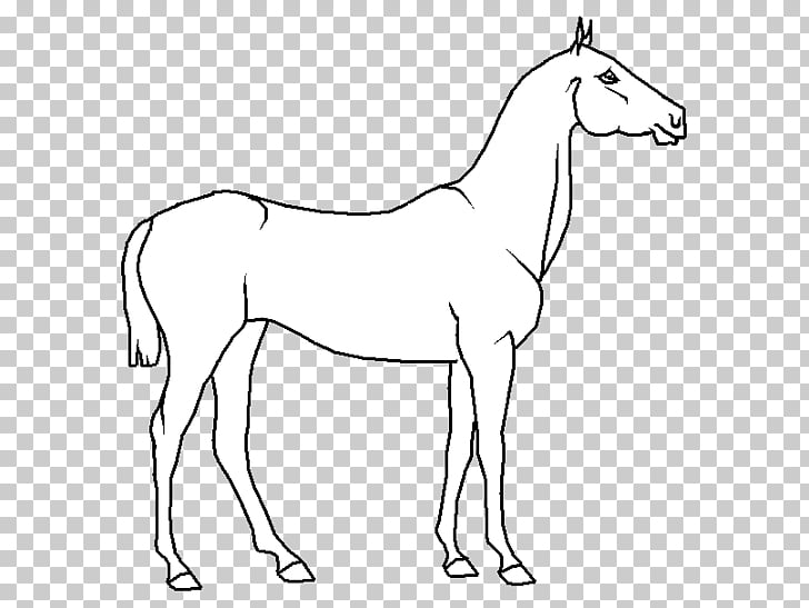 Mule Foal Stallion Bridle Colt, mustang PNG clipart.