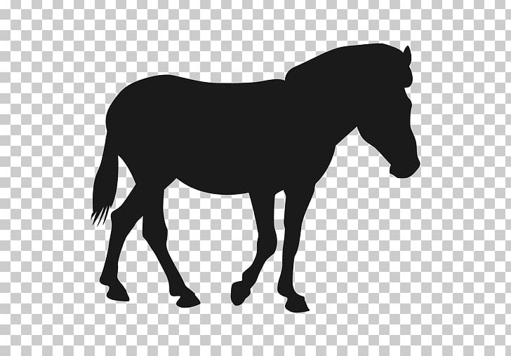 Mule Mustang Stallion Pony Colt PNG, Clipart, Black And.