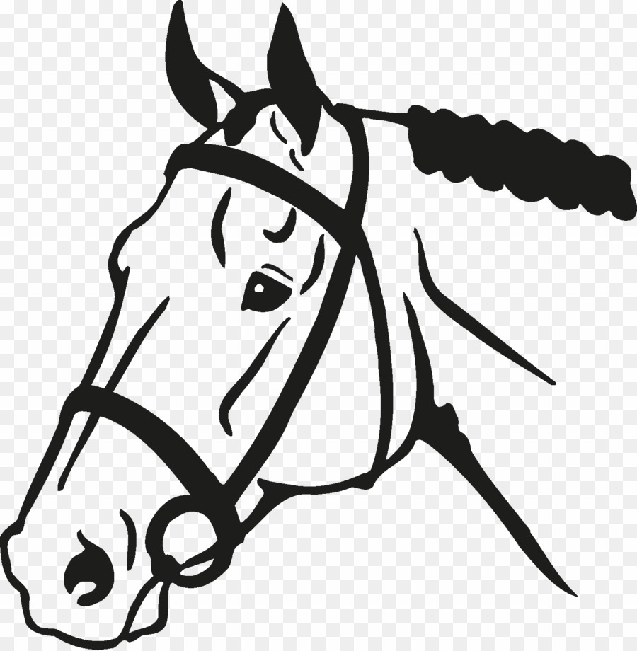 Horse Face Vector PNG Colt Clipart download.