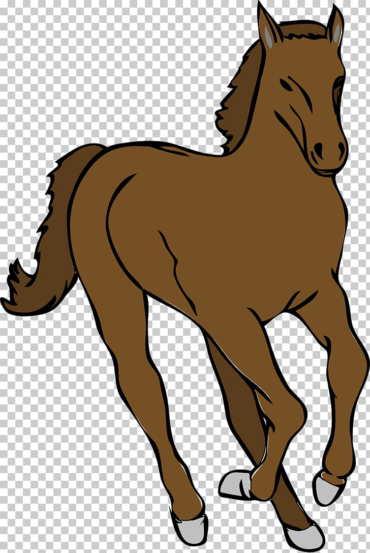 Tennessee Walking Horse Mare & Colt Foal , horse PNG clipart.
