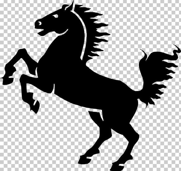 Mustang Friesian Horse Foal Mare PNG, Clipart, Animal, Black.