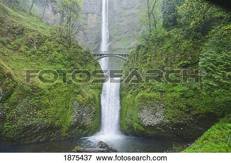 Picture of oregon, united states of america; multnomah falls in.
