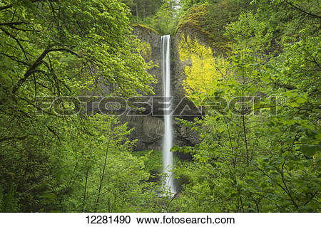 Stock Photography of Latourell Falls, Columbia River Gorge; Oregon.