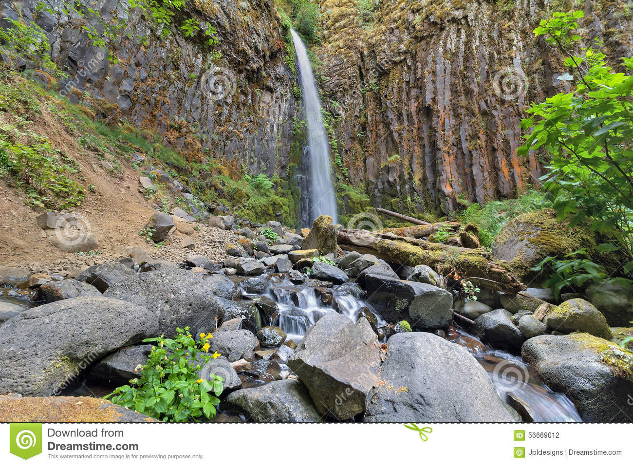 Dry Creek Falls In Columbia River Gorge Stock Photo.