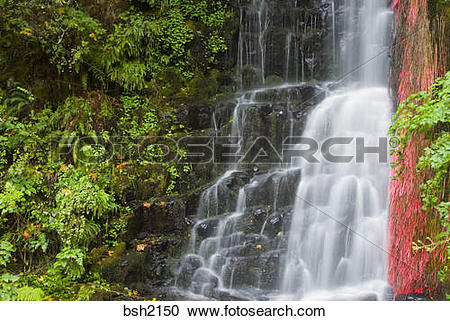Stock Photography of Coopey Falls, Columbia River Gorge National.