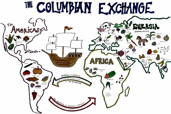 In 1492 the Columbian exchange also known as the.