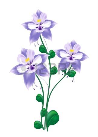 165 Columbine Stock Illustrations, Cliparts And Royalty Free.