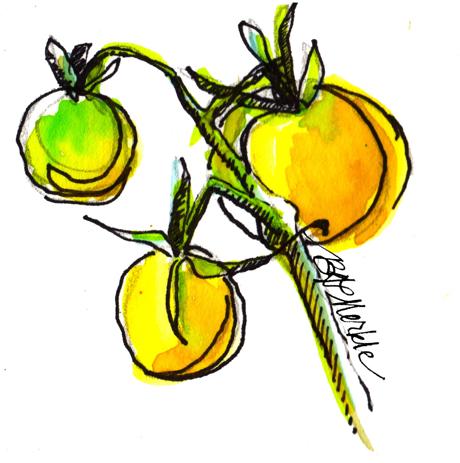 "Drawn to Québec: Sketchbook snapshot: ""Fruits of Summer"" and."