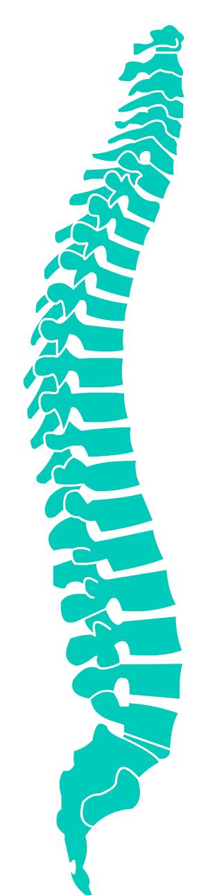 Columna vertebral png 6 » PNG Image.