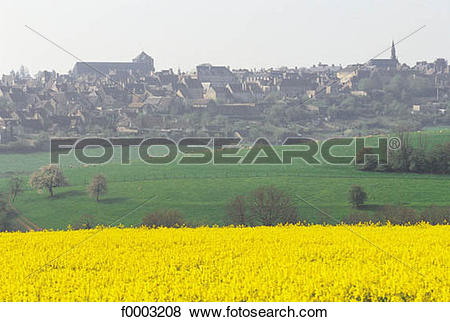 Pictures of village, colza, field, Normandy, Europe, France.
