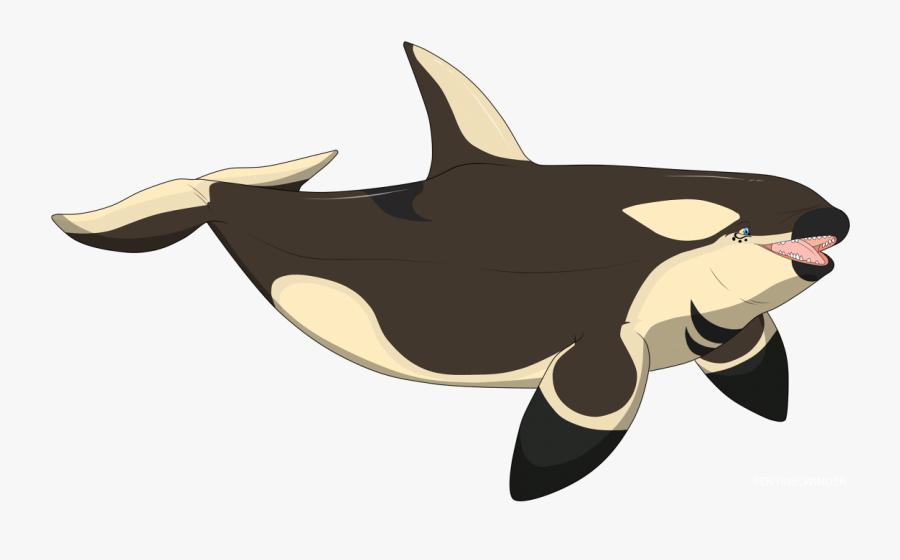 Transparent Orca Whale Clipart.