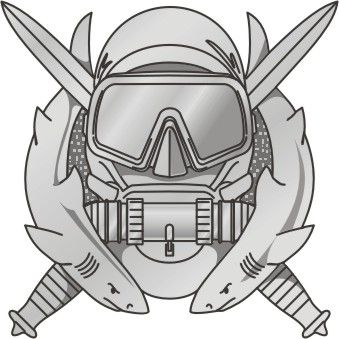Special Operations Forces Scuba badge.