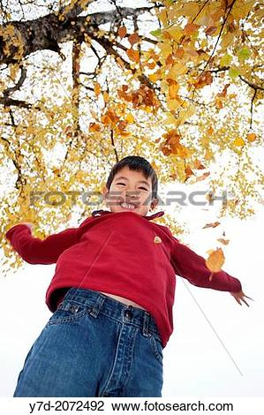 Stock Photo of A young boy throws leaves up in the air and lets.