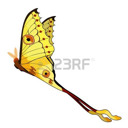 128 Moon Moth Stock Illustrations, Cliparts And Royalty Free Moon.