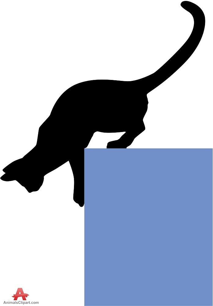 Cat Coming Down.