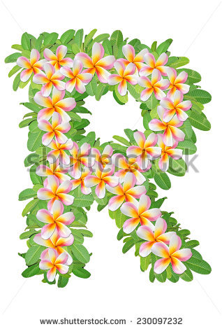 Alphabet flowers free stock photos download (10,867 Free stock.