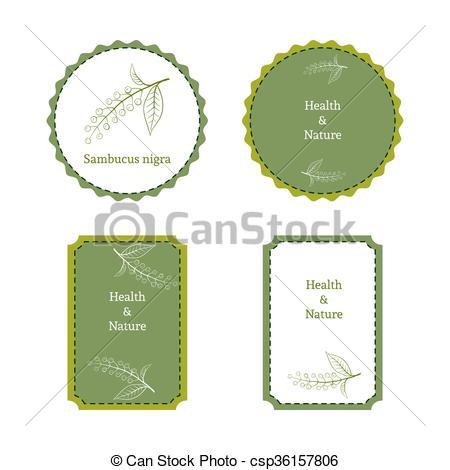 Vector Clipart of Handdrawn vector illustration bird cherry.