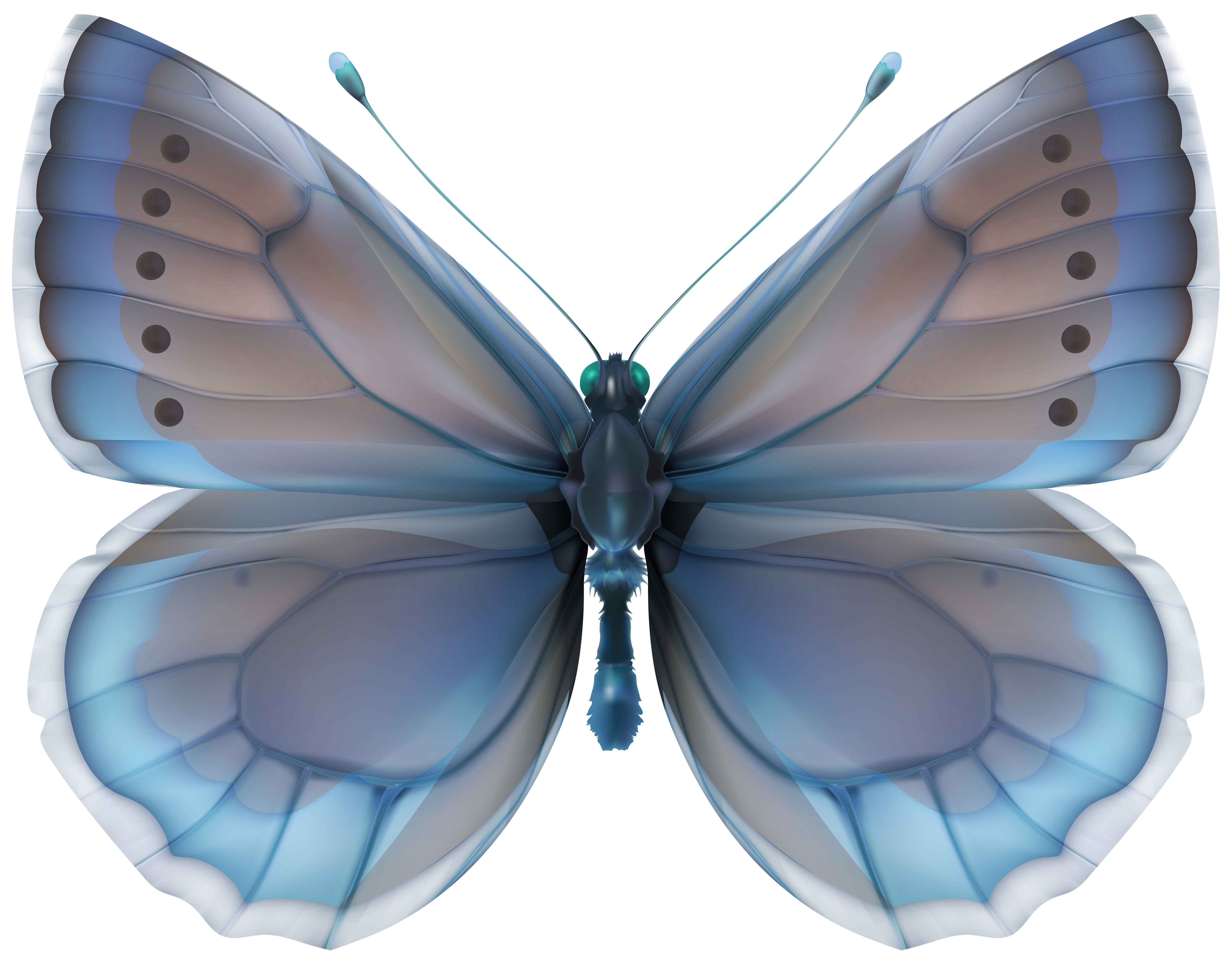 Blue Butterfly PNG Clip Art Image.