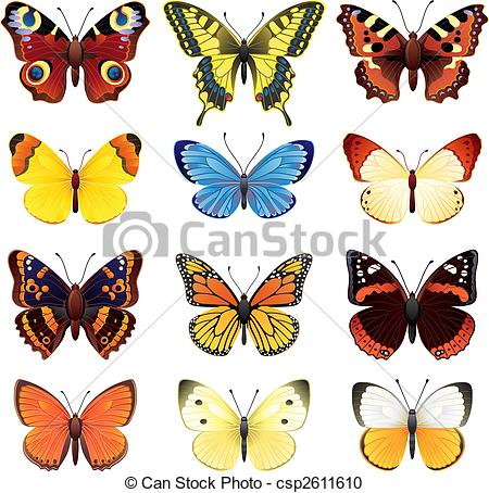 Common blue butterfly Vector Clip Art Royalty Free. 19 Common blue.
