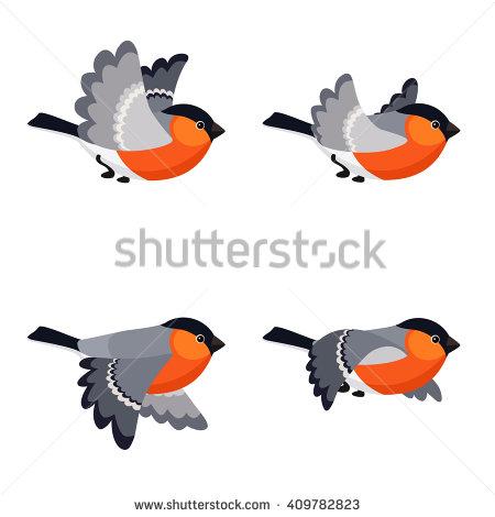 Bullfinch Stock Photos, Royalty.