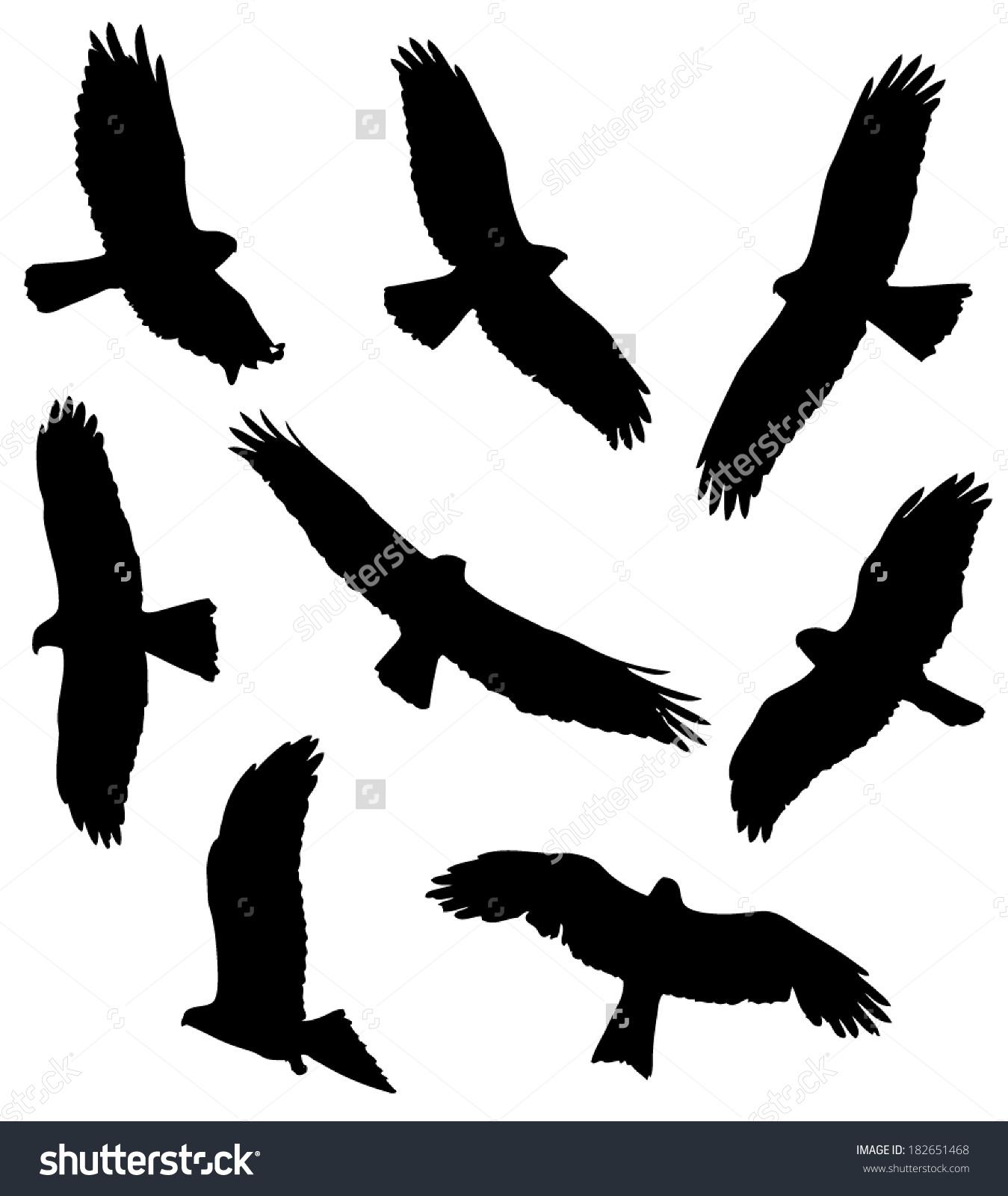 Common Buzzard Flight Silhouettes Stock Vector 182651468.