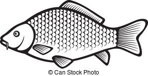 Carp Stock Photos and Images. 13,174 Carp pictures and royalty.
