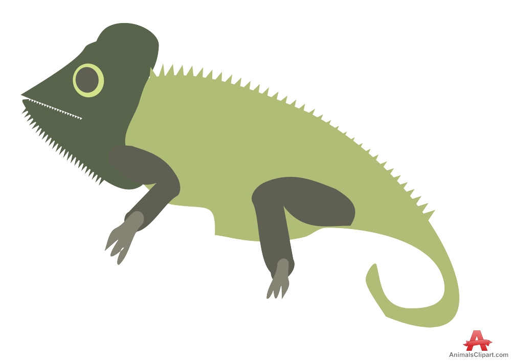 Common chameleon clipart etc.