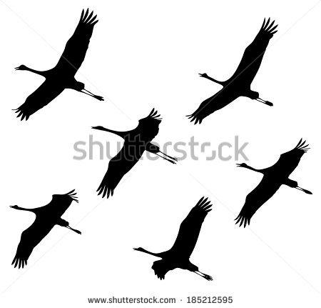 Cranes Birds Migration Flight Vector Silhouette Stock Vector.