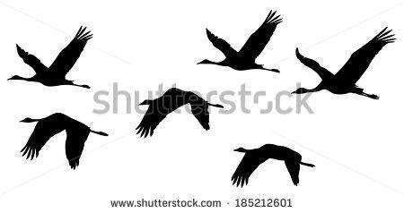 Flying Crane Stock Photos, Royalty.