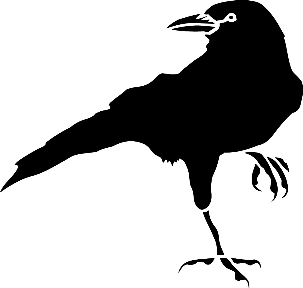 Common Crow Clipart - Clipground